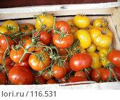 Купить «Ящик с желтыми и красными помидорами», фото № 116531, снято 25 августа 2007 г. (c) Колчева Ольга / Фотобанк Лори