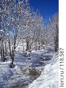 Купить «Солнечный зимний день», фото № 118587, снято 1 апреля 2006 г. (c) Александр Галуцкий / Фотобанк Лори