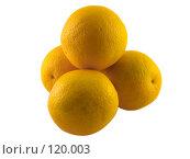 Купить «Четыре апельсина на белом фоне», фото № 120003, снято 18 ноября 2018 г. (c) Олег Крутов / Фотобанк Лори