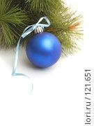 Купить «Синий новогодний шар и сосновая ветка», фото № 121651, снято 31 октября 2007 г. (c) Останина Екатерина / Фотобанк Лори