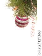 Купить «Новогодний золотой шар на сосновой ветке», фото № 121663, снято 31 октября 2007 г. (c) Останина Екатерина / Фотобанк Лори