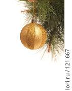 Купить «Новогодний золотой шар на сосновой ветке», фото № 121667, снято 31 октября 2007 г. (c) Останина Екатерина / Фотобанк Лори