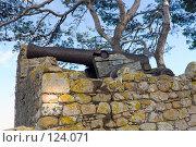 Купить «Испания, Тосса де Мар, развалины со старой пушкой», фото № 124071, снято 20 августа 2007 г. (c) Александр Соболев / Фотобанк Лори