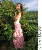 Купить «Летнее настроение», фото № 132603, снято 5 августа 2007 г. (c) A.Козырева / Фотобанк Лори