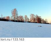 Купить «Зимний пейзаж», фото № 133163, снято 21 мая 2018 г. (c) A.Козырева / Фотобанк Лори