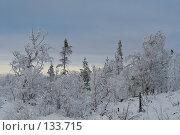 Купить «Полярный зимний пейзаж», фото № 133715, снято 3 ноября 2006 г. (c) Ольга Красавина / Фотобанк Лори