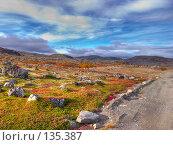 Купить «Дорога в тундре», фото № 135387, снято 25 апреля 2019 г. (c) Мирзоянц Андрей / Фотобанк Лори