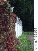 Купить «Архангельское поместье», фото № 135959, снято 22 сентября 2006 г. (c) Юлия Севастьянова / Фотобанк Лори
