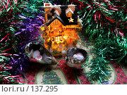 Купить «В ожидании праздника», фото № 137295, снято 4 декабря 2007 г. (c) Parmenov Pavel / Фотобанк Лори