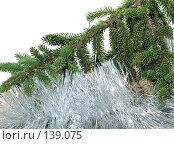 Купить «Новогодняя ветка ели», фото № 139075, снято 30 октября 2007 г. (c) Иван / Фотобанк Лори