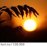 Купить «Объятия», фото № 139959, снято 22 сентября 2007 г. (c) Смирнова Лидия / Фотобанк Лори