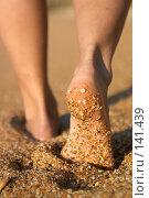 Купить «Босые ноги на пляже», фото № 141439, снято 21 октября 2018 г. (c) Максим Горпенюк / Фотобанк Лори