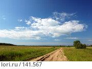 Купить «Поле. Синее небо с облаками», фото № 141567, снято 24 июня 2007 г. (c) Катыкин Сергей / Фотобанк Лори