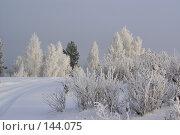 Снежная дорога. Стоковое фото, фотограф Герман Филатов / Фотобанк Лори