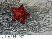 Купить «Серебристая ветка с красной звездочкой», фото № 144407, снято 10 декабря 2007 г. (c) Елена Бринюк / Фотобанк Лори