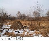 Купить «Забытый стожок, зима, Приморье», фото № 149055, снято 8 декабря 2007 г. (c) Олег Рубик / Фотобанк Лори