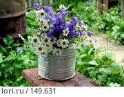 Купить «Полевые цветы», фото № 149631, снято 11 июля 2004 г. (c) Морозова Татьяна / Фотобанк Лори