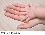 Купить «Руки матери и ребёнка», фото № 149687, снято 12 декабря 2007 г. (c) Круглов Олег / Фотобанк Лори