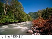 Купить «Река Мзымта. Красная Поляна», фото № 150211, снято 13 августа 2007 г. (c) Петухов Геннадий / Фотобанк Лори