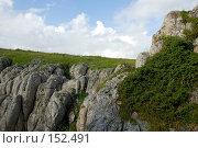 Купить «Плато Лаго-Наки. Кавказский заповедник», фото № 152491, снято 10 августа 2007 г. (c) Петухов Геннадий / Фотобанк Лори