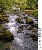 Купить «Горный ручей. Кавказ, Абхазия.», фото № 155831, снято 9 августа 2007 г. (c) Иван Сазыкин / Фотобанк Лори