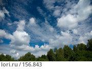 Купить «Синее небо с кучевыми облаками», фото № 156843, снято 15 июля 2007 г. (c) Петухов Геннадий / Фотобанк Лори