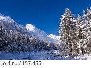 Купить «Баксанское ущелье зимой», фото № 157455, снято 15 декабря 2007 г. (c) Борис Панасюк / Фотобанк Лори