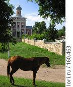 Купить «Серпухов, Кремль, Успенская церковь», фото № 160463, снято 28 июня 2006 г. (c) ИВА Афонская / Фотобанк Лори