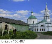Купить «Серпухов, Кремль, Троицкий собор», фото № 160487, снято 28 июня 2006 г. (c) ИВА Афонская / Фотобанк Лори