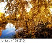 Купить «Зауральская осень», фото № 162215, снято 30 сентября 2007 г. (c) Кондратьев Игорь Витальевич / Фотобанк Лори