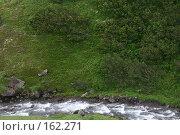 Купить «Камчатка. Речка на плато Мутновское.», фото № 162271, снято 26 июня 2007 г. (c) Николай Коржов / Фотобанк Лори