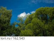 Купить «След от самолета, пролетающего высоко в небе», фото № 162543, снято 1 августа 2007 г. (c) Петухов Геннадий / Фотобанк Лори