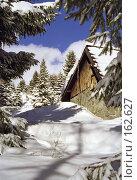 Купить «Приют», фото № 162627, снято 24 февраля 2019 г. (c) Юрий Назаров / Фотобанк Лори