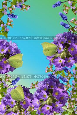 Купить «Весенняя открытка с цветами и бабочками», фото № 162879, снято 21 октября 2018 г. (c) Елена Блохина / Фотобанк Лори