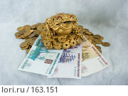 Купить «Жаба с монеткой на деньгах, монеты и банкноты», эксклюзивное фото № 163151, снято 29 декабря 2007 г. (c) Александр Щепин / Фотобанк Лори
