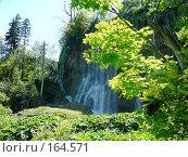 Водопад. Стоковое фото, фотограф maruta bekina / Фотобанк Лори