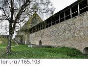 Старая  Ладога. Крепость, фото № 165103, снято 11 мая 2007 г. (c) Александр Секретарев / Фотобанк Лори