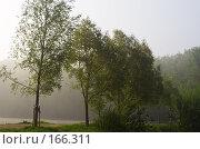 Купить «Деревья у пруда», фото № 166311, снято 27 апреля 2007 г. (c) Михаил Лавренов / Фотобанк Лори