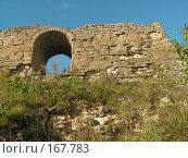 Купить «Руины Тайничной башни Ладожской крепости», фото № 167783, снято 9 сентября 2006 г. (c) Елена Яковенко / Фотобанк Лори