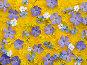Трехцветный весенний фон, фото № 169327, снято 29 марта 2017 г. (c) Юрий Брыкайло / Фотобанк Лори
