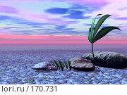 Купить «Пустынный пейзаж с одиноким растением», иллюстрация № 170731 (c) ElenArt / Фотобанк Лори