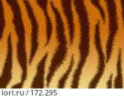 Купить «Текстура - шкура тигра», иллюстрация № 172295 (c) Лукиянова Наталья / Фотобанк Лори