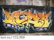 Купить «Граффити... Киев, Украина.», фото № 172959, снято 3 января 2008 г. (c) Игорь Веснинов / Фотобанк Лори