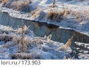 Купить «Незамерзающий ручей», фото № 173903, снято 8 января 2008 г. (c) Юрий Синицын / Фотобанк Лори