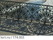 Купить «Решетка парапета Певческого моста», эксклюзивное фото № 174003, снято 9 апреля 2006 г. (c) Александр Алексеев / Фотобанк Лори