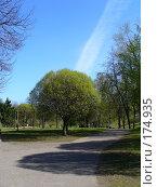 Купить «Городской парк», фото № 174935, снято 6 мая 2007 г. (c) Наталья Ярошенко / Фотобанк Лори