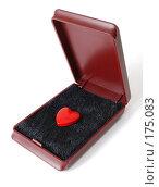 Купить «Сердечко в футляре», фото № 175083, снято 9 января 2008 г. (c) Валерий Александрович / Фотобанк Лори