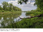 Купить «Река», фото № 175211, снято 1 июля 2007 г. (c) Николай Федорин / Фотобанк Лори