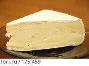 Купить «Сыр \  Cheese», фото № 175459, снято 20 мая 2019 г. (c) Лифанцева Елена / Фотобанк Лори