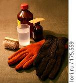 Купить «Уход за замшевыми перчатками», фото № 175559, снято 27 января 2004 г. (c) Павлова Татьяна / Фотобанк Лори
